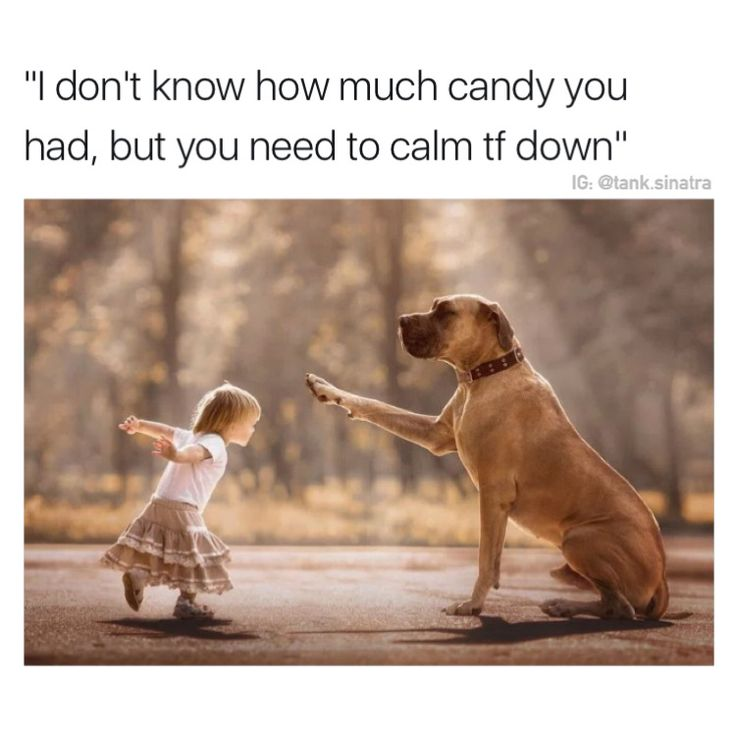 I don't know how much candy you had, but you need to calm tf down
