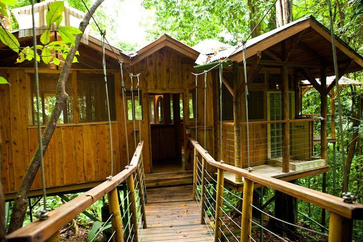 Fila tortuga treehouse at finca bellavista tree house