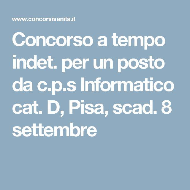 Concorso a tempo indet. per un posto da c.p.s Informatico cat. D, Pisa, scad. 8 settembre