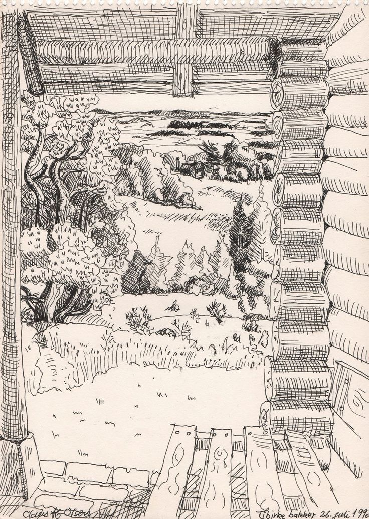 View from an old log house in the Tibirke/Tisvilde area - pen drawing 190 - Claus Ib Olsen