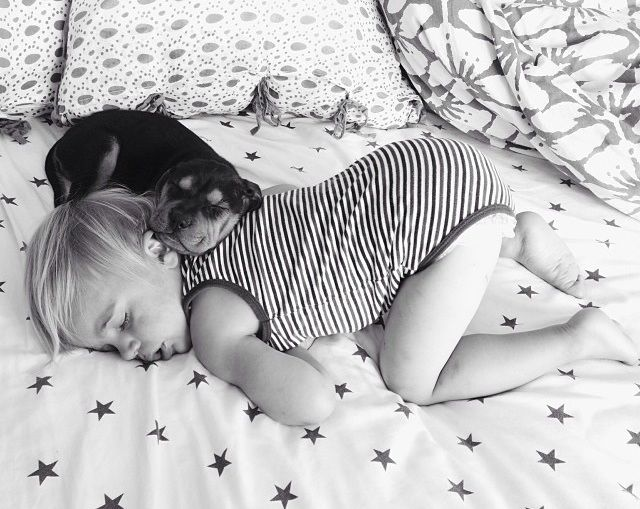: Puppies, Friends, Dogs, Naps Time, Kids, Baby, Toddlers, Photo, Animal