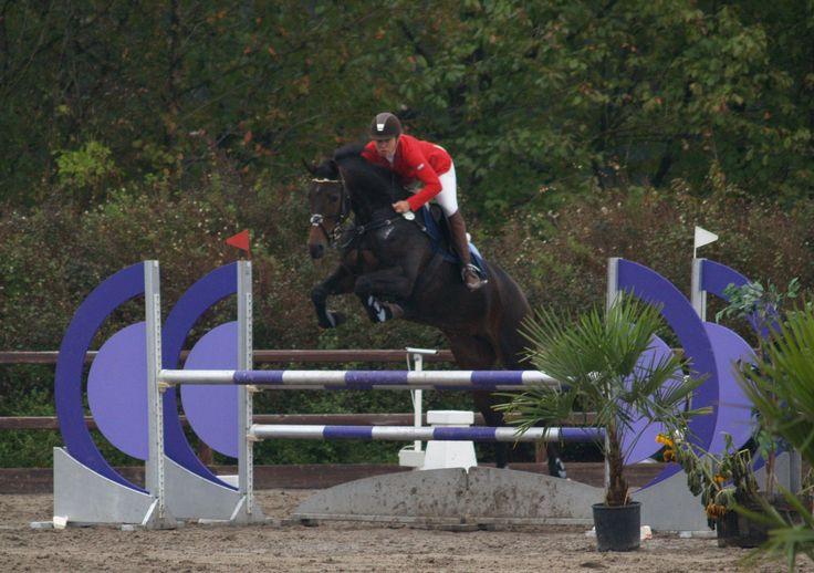 Holfelt Horses Stutteri - Casino under konkurrence.   Her kan du se Casino springe   #Springhest #ridning #heste #hesteridning