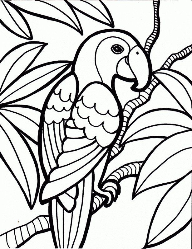 Bird Coloring Pages For Kids Bird Coloring Page With Free Bird Coloring Pages In 2020 Zoo Coloring Pages Animal Coloring Pages Bird Coloring Pages