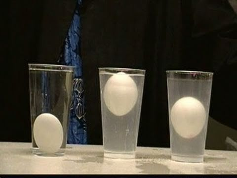 Density demo using eggs, salt, and water.