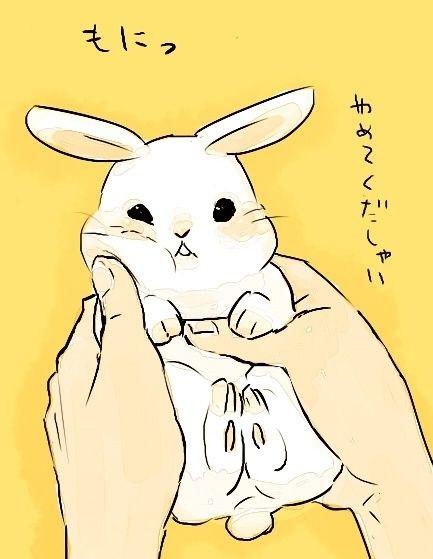 Japanese Illustration ★<--- I love the slightly affronted expression...