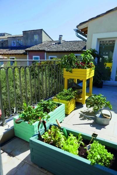 colorful wooden boxes for small garden design
