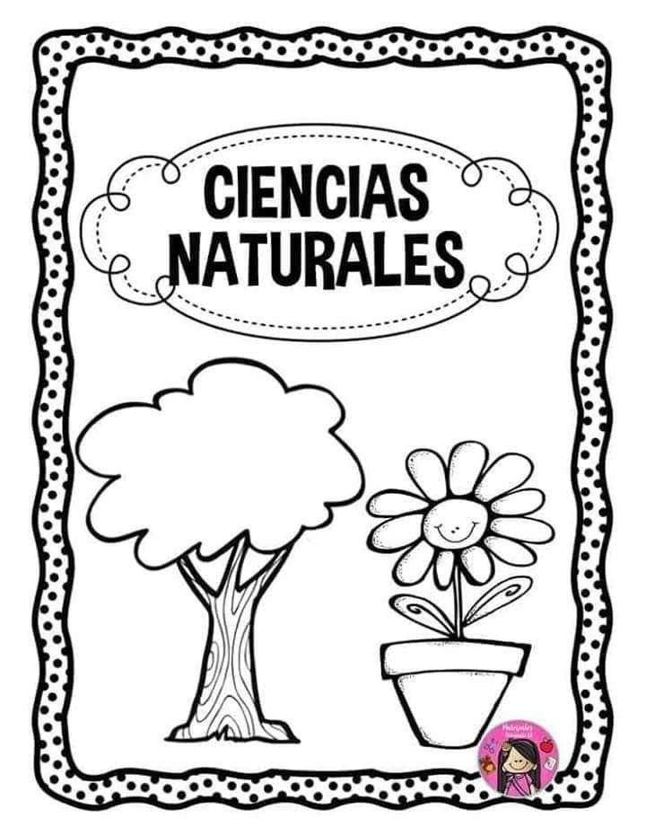 Pin De Marisa Garcia En Portadas Ciencias Naturales Portadas Ciencia