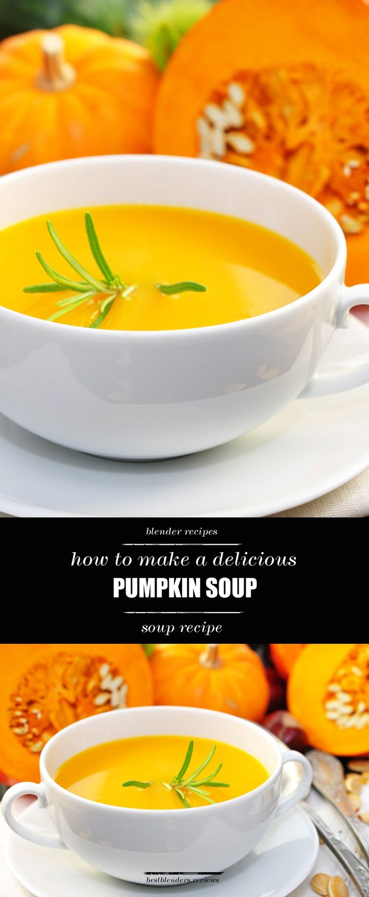 You will LOVE this simply delicious pumpkin soup! It doesn't need to be fall season to enjoy this premium recipe. Make it anytime of the year. Check out our easy to follow instructions on how to whip this up by clicking through!  #delectable