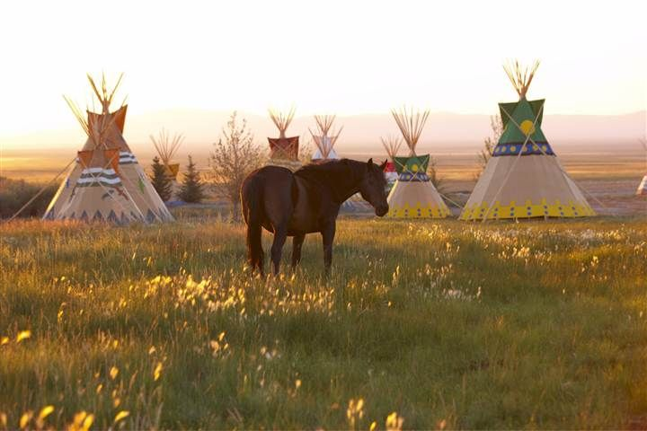 Mustang Monument, an eco-resort where guests share the land with the legendary horses of the West, officially opens Sunday, the brainchild o...