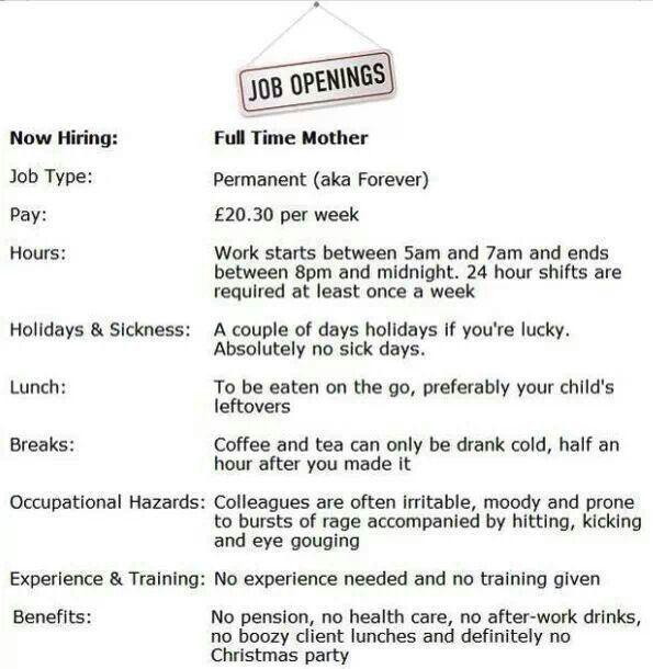 Best New JobCareer Images On   Career Ideas Ha Ha
