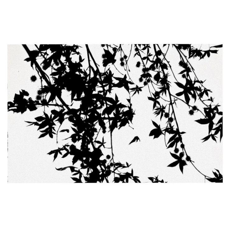 "Ingrid Beddoes ""Black on White"" Decorative Door Mat"