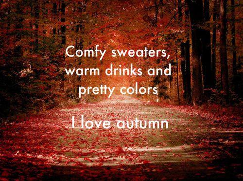 i love autumn (fall,autumn,love,i love autumn,comfy sweaters,warm drinks,pretty colors,drinks,warm,sweaters)