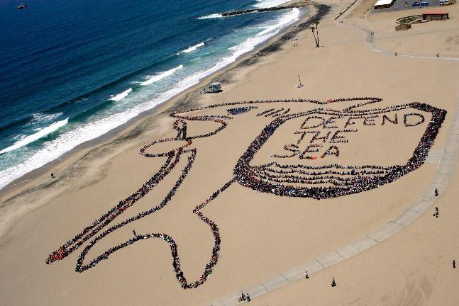 DEFEND THE SEA