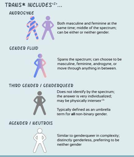 Best 25 Non binary gender ideas on Pinterest  What is