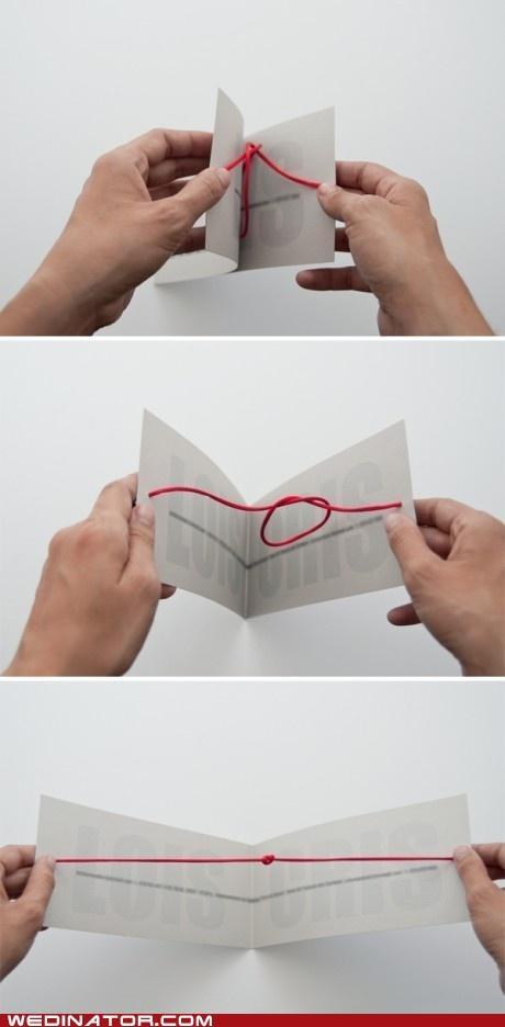 tying the knot...cute #WeddingInvitations #UniqueWeddingInvitations #CheapWeddingInvitations #myweddingnow.com #myweddingnow #Top_wedding_invitations #wedding_invitations_DIY #Simple_wedding_invitations #Cute_wedding_invitations #easy_wedding_invitations #Best_wedding_invitations