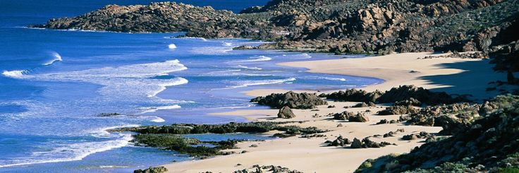 Cape to Cape Catchments Group : Capes Volunteer Team undertakes conservation work in the beautiful south-west