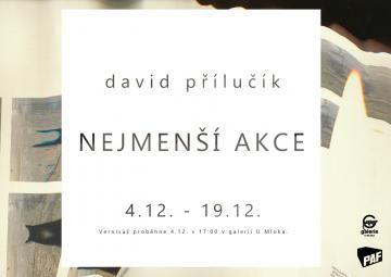 výstava Nejmenší akce Davida Přilučíka prodloužena do konce LEDNA 2015 v Galerii U Mloka, Olomouc/ http://www.pifpaf.cz/cs/2014-mlok-vystava-prodlouzena