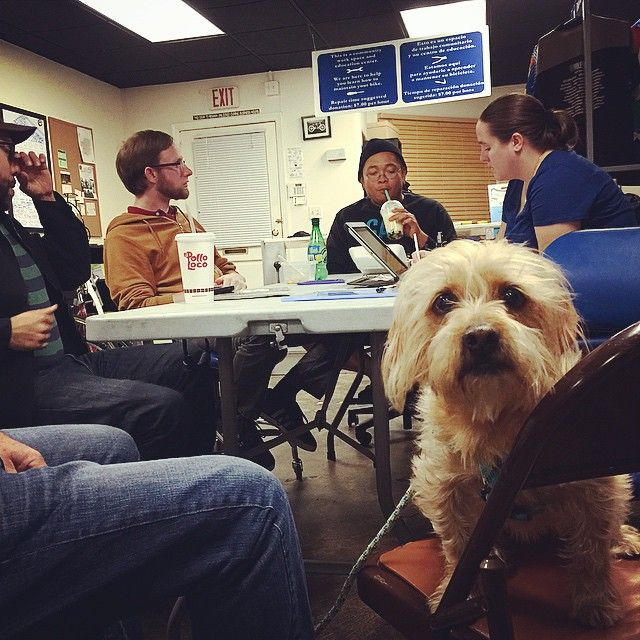 #Bender has no opinion on whether we should be serving #JelloShots at our upcoming #AnniversaryParty. Volunteer meeting night: where we discuss the important issues. This is going to be one raucous #party. via Instagram http://ift.tt/1zOd68g