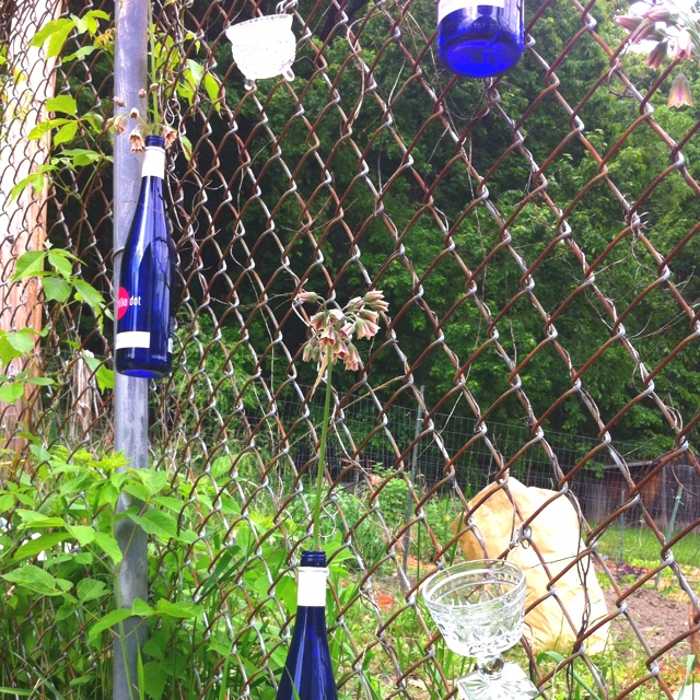 City fence decor: wine bottles for flowers and thrift store vessels for tealights (add sand).  Secure with wire.  Thrifty, chic, and great for ambiance.