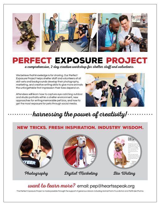 Learn more about our Perfect Exposure Project!