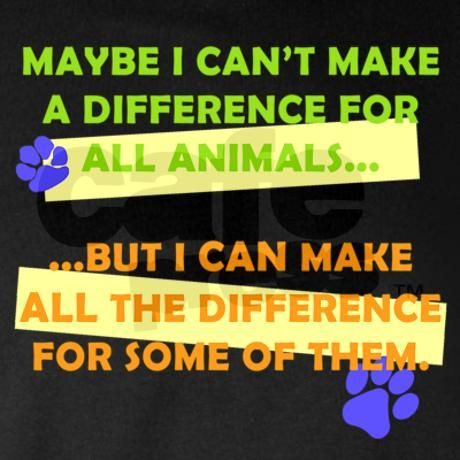 The ripple effect....the more of us that adopt rescue animals from shelters and educate ourselves and each other...the more hope there is for animals who cannot spak for themselves.