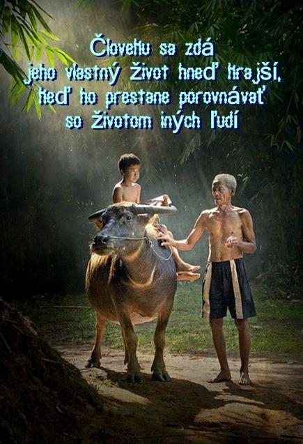 Človeku sa zdá jeho vlastný život hneď krajší, keď ho prestane porovnávať so…