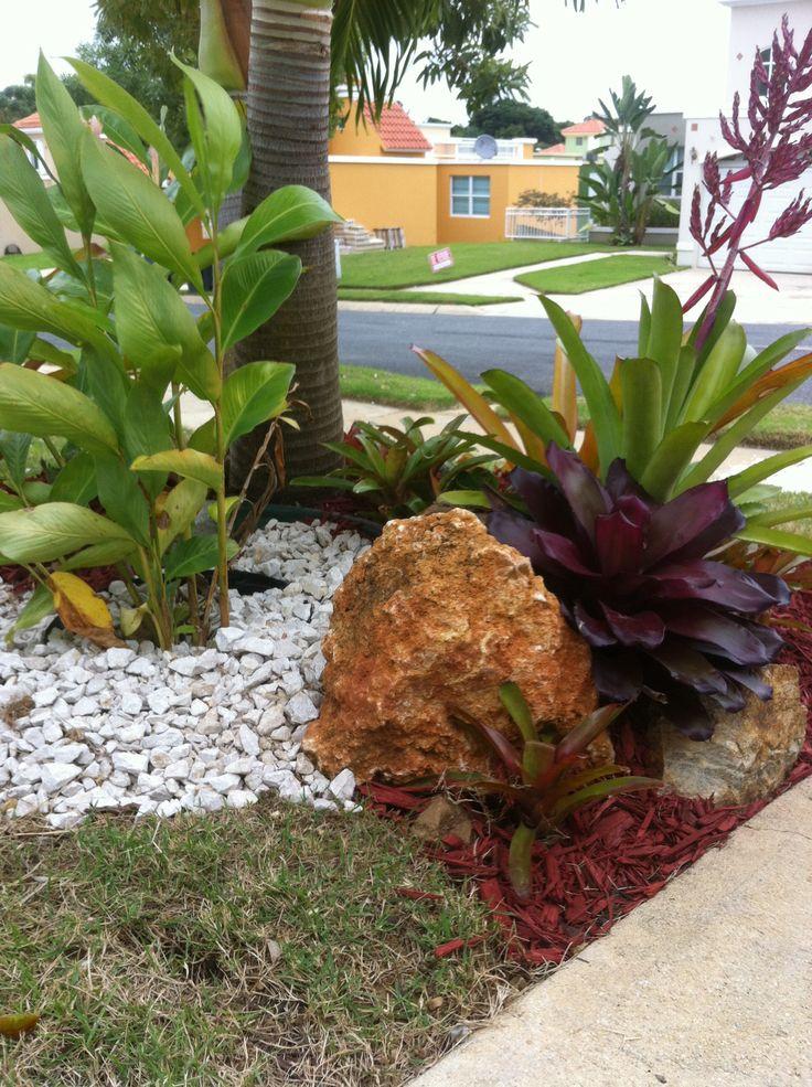 bromeliads with boulders rocks patio yard inspiration pinterest rocks. Black Bedroom Furniture Sets. Home Design Ideas