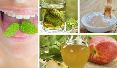 Los 9 mejores remedios caseros para aliviar el mal aliento o halitosis - Mejor con Salud
