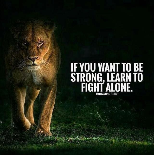 Fighter Motivational Quotes Learn to fight alone.. | Words & Wishes | Pinterest | Quotes  Fighter Motivational Quotes