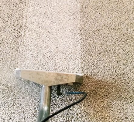 Best 25+ Houston TX Carpet Cleaning images on Pinterest ...