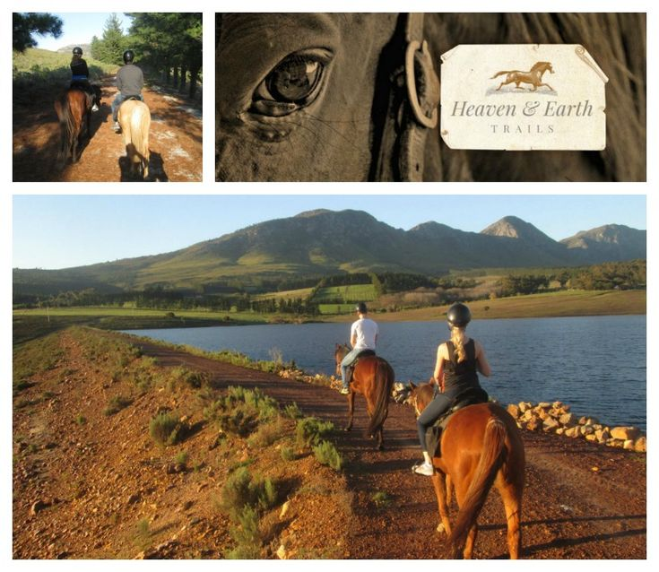 Heaven & Earth Trails - Hermanus Address: Karweyderskraal Farm, Hermanus Tel: 083 885 5608 Email: gotzekarlvoet@gmail.com