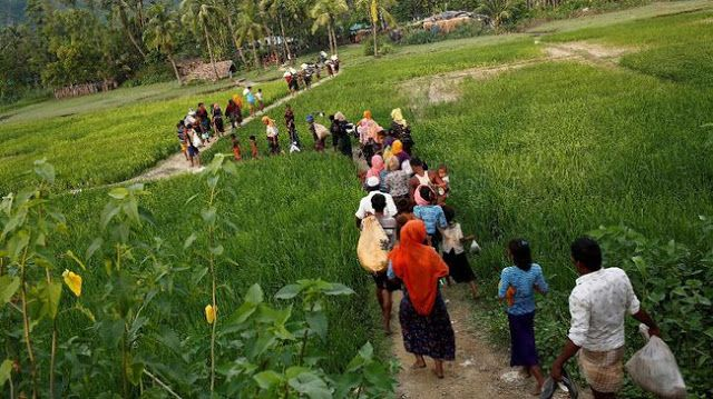 "Berita Islam ! Halau Rohingya Myanmar Tanam Ranjau di Perbatasan Bangladesh... Bantu Share ! http://ift.tt/2wGgxip Halau Rohingya Myanmar Tanam Ranjau di Perbatasan Bangladesh  Myanmar dilaporkan menanamkan ranjau di sepanjang perbatasan dengan Bangladesh untuk mencegah Muslim Rohingya yang kabur kembali ke negaranya. ""Mereka menanam ranjau darat di wilayah mereka di sekitar pagar berduri"" ujar seorang sumber keamanan Bangladesh kepada Reuters Rabu (6/9). Sumber tersebut mengatakan mereka…"