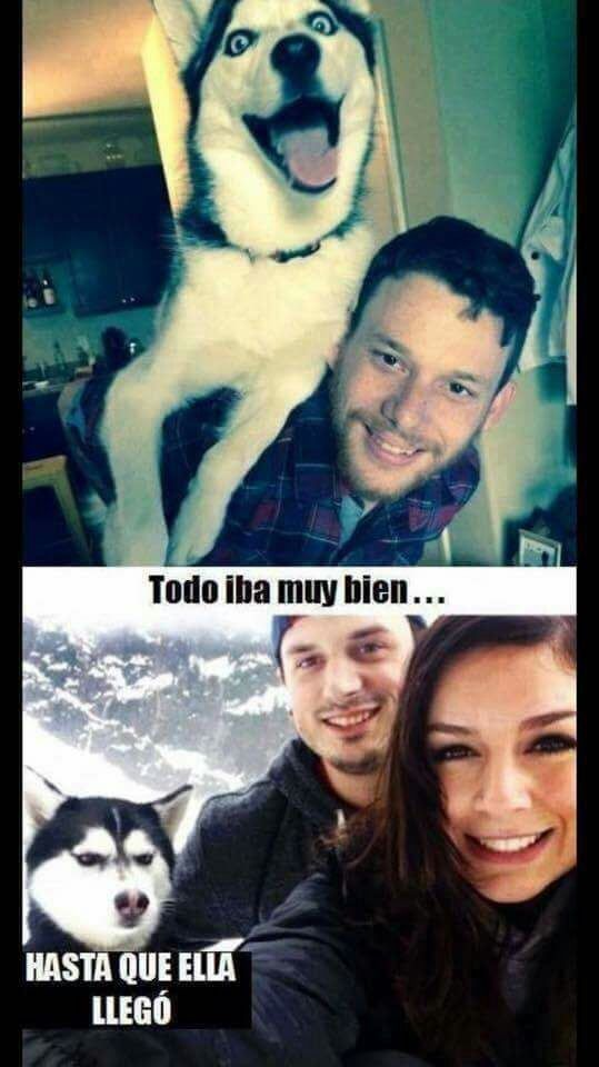 #comico #humores