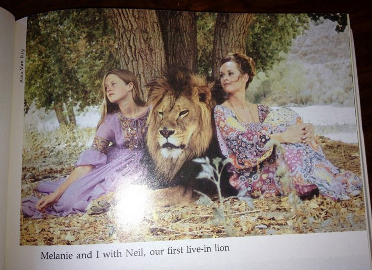 Best Melanie Griffith Family And Neil Images On Pinterest - 1971 family lived real lion named neil