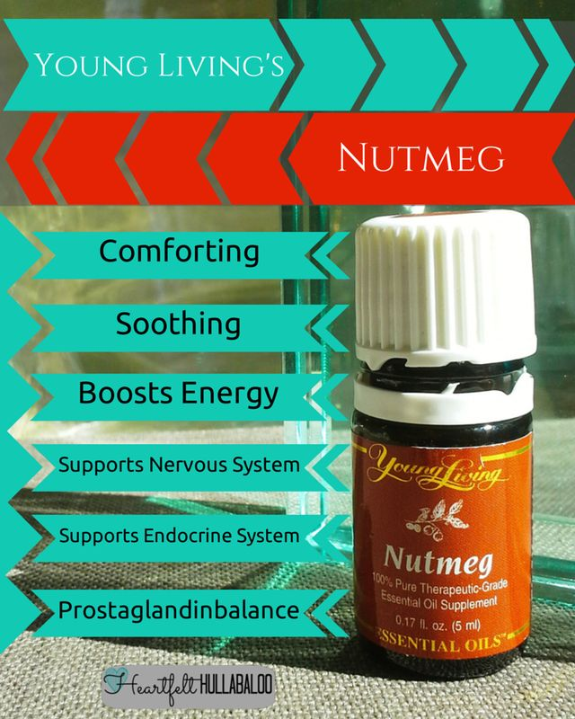 Young Livings Nutmeg. Soothing, comforting, boosts energy, supports the nervous and endocrine systems and prostaglandin balance. #essentialoils #undertwentydollars #heartfelthullabaloo