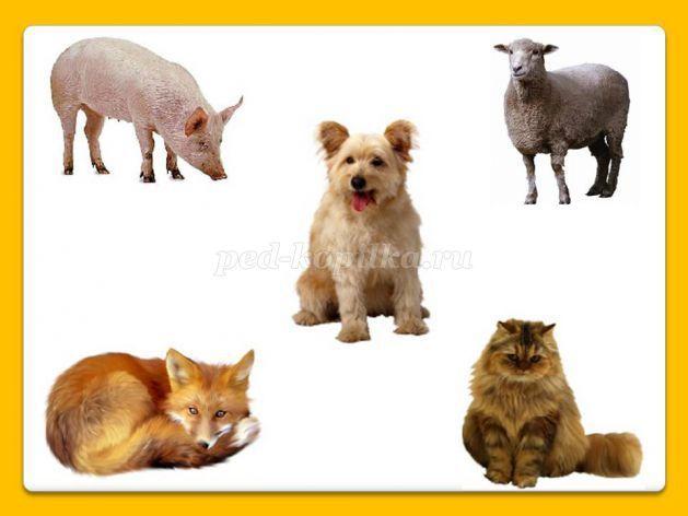 Дидактические игры для дошкольников на тему: Животные