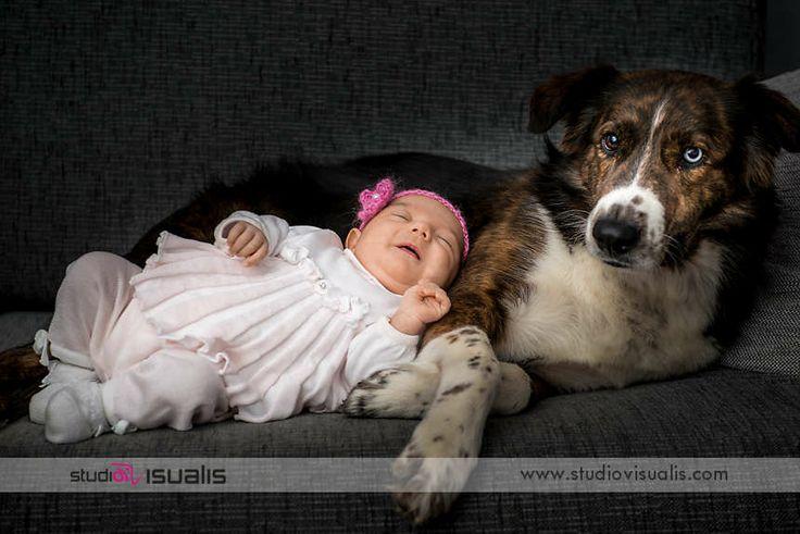 Neonata ritratta insieme al suo fedele cagnolino. Fotografie professionali per neonati. #fotografo #newborn