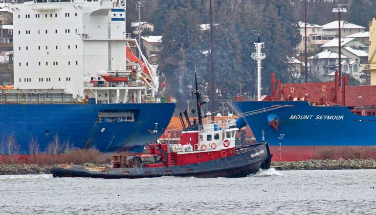 """Seaspan Marine's tugboat """"SEASPAN QUEEN"""" passes by ships """"STAR HARMONIA"""" and """"MOUNT SEYMOUR"""" at Fraser Surrey Docks. Click image to enlarge."""