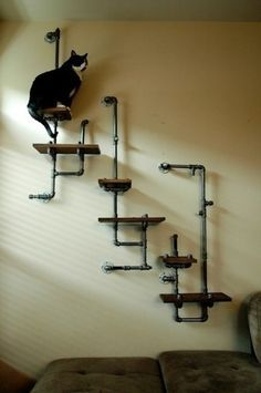 I don't have a cat (no plans on getting one) but its great to put stuff on and with longer shelves it could be a book shelf  Plumbing Pipe Shelves and Hangers | DIY for Life