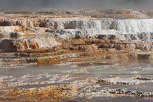Parc national de Yellowstone — Wikipédia