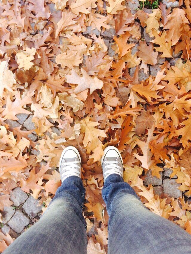 Milan. Autumn in a park #fromwhereistand #ihavethisthingwithfloors #ihavethisthingwithtiles #selfeet
