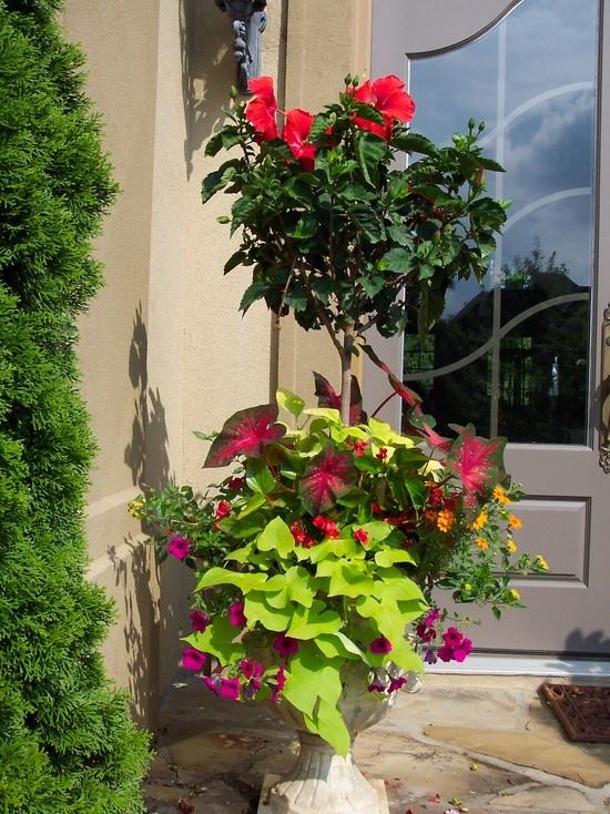 23 best Feng Shui Garden images on Pinterest | Decks, Flower beds ...