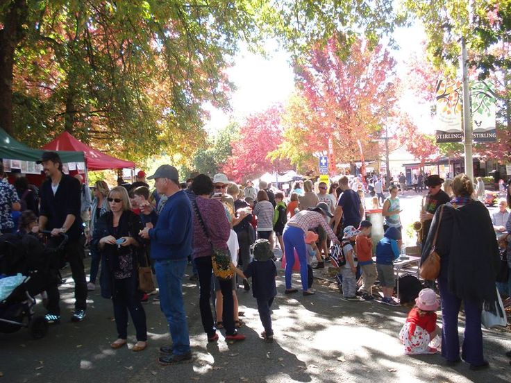 The Stirling Market is always on the fourth Sunday of the month. Its great for plants, gourmet food and of course Trielle soy wax candles, soaps and bathbombs...