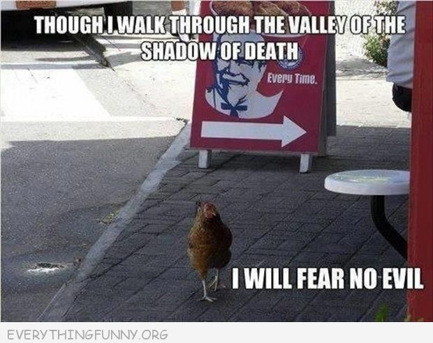Why did the chicken cross the street...