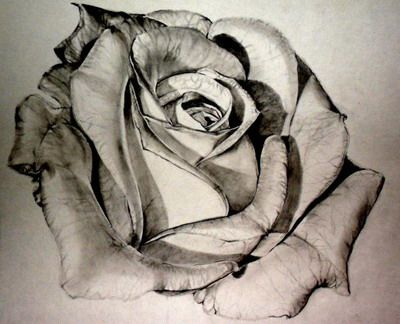 The realism in this drawing is awesome!