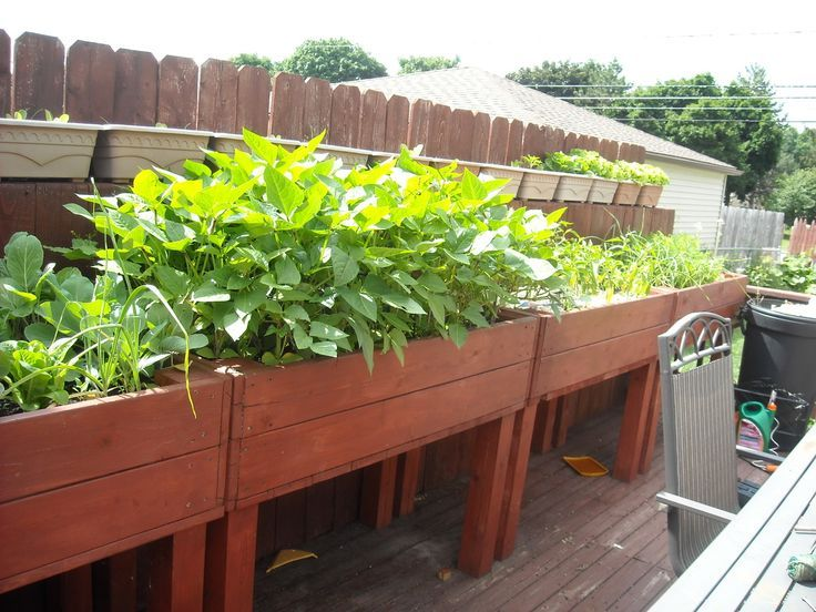 Elevated Garden Beds For Those Who Need Or Want To Stand While Gardening.