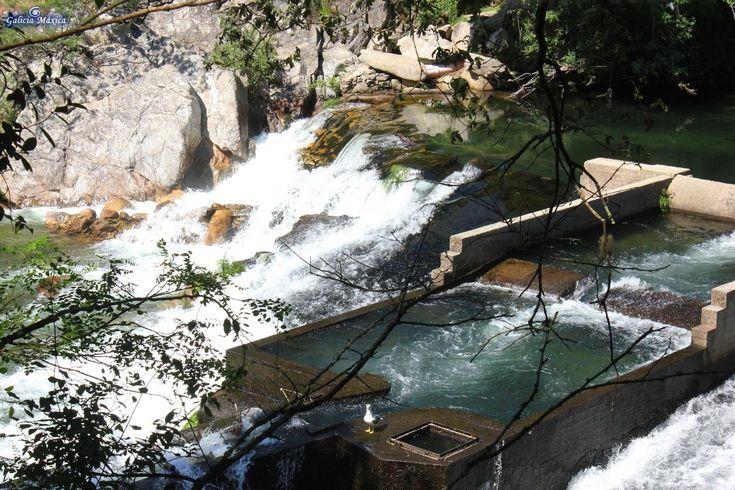 Información sobre el paseo y senda del Lérez, en Pontevedra. Desde A Ponte do Burgo hasta Ponte Bora