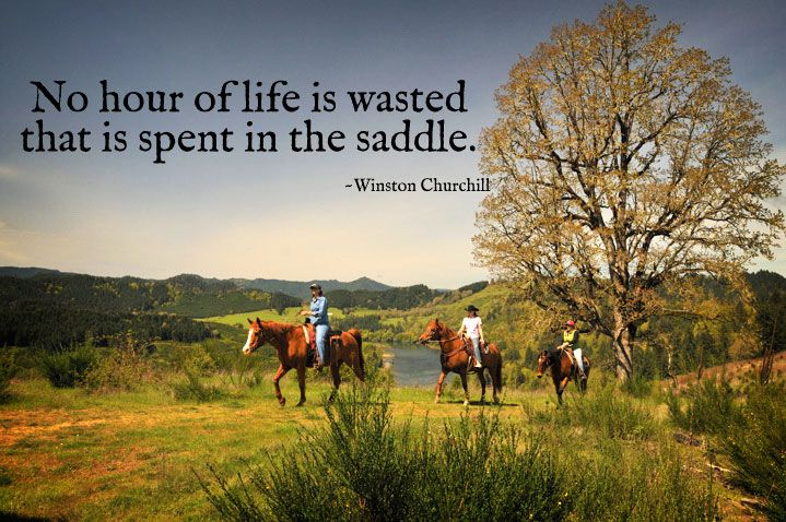 <3: Horseback Riding, Hors Stuff, Quote, Life Mottos, Hors Cowgirl, Country Life, Riding Horses, Hors Things, True Stories