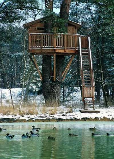 Out of a book titled 'Execptional Treehouses'; the author's company builds these things!