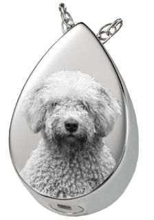 Honour Your Pets With Ashes Jewellery From Urns UK   Just like the memorial jewelry created for humans, there is also Ashes jewelry for pets. There is a large variety of pet ashes jewelry such as keepsake necklace, memorial jewelry, pet cremation keepsakes, pet #cremation #pendants and pet pendants.   https://urns-uk.blogspot.com/2016/12/honour-your-pets-with-ashes-jewellery-from-urns-uk.html